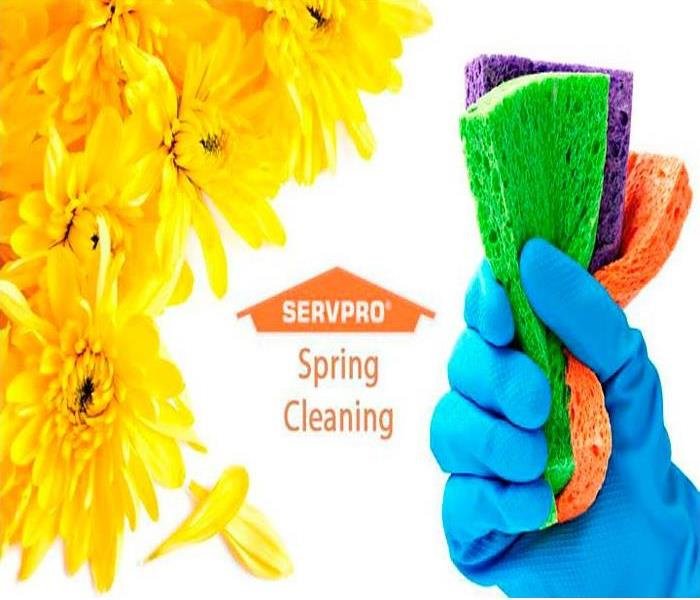 Cleaning Ready to give your home a top-to-bottom polishing?