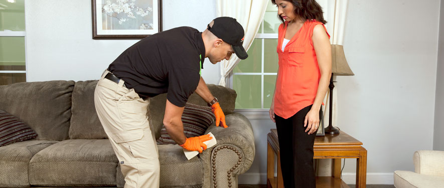 Port St. Lucie, FL carpet upholstery cleaning